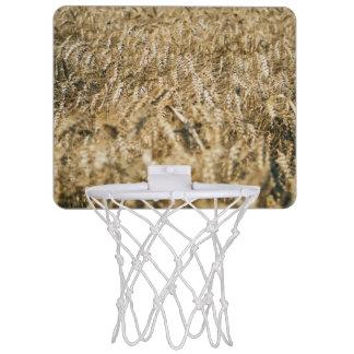 Summer Wheat Field Closeup Farm Photo Mini Basketball Hoop