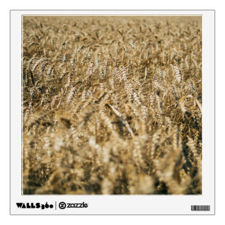 Summer Wheat Field Closeup Farm Photo Wall Decal