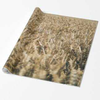 Summer Wheat Field Closeup Farm Photo Wrapping Paper