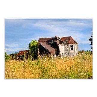 Summer's Beauty-Dilapidated House Art Photo