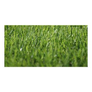 Summertime Grass Customized Photo Card