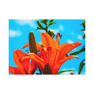 Summertime In Orange Canvas Print