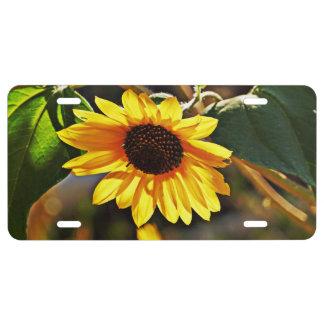Summertime Sunflower License Plate