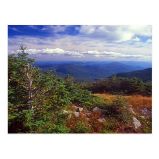 Summit of Mount Moosilaukee White Mountains Postcard