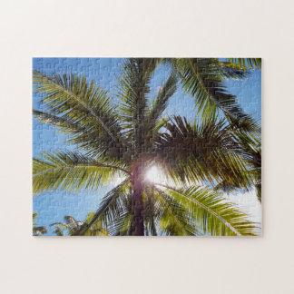 Sun across Palms Jigsaw Puzzle