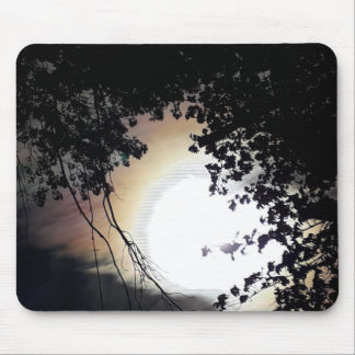 Sun And Pin Oaks Mouse Pad