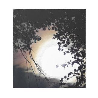 Sun And Pin Oaks Notepad