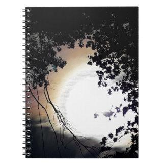 Sun And Pin Oaks Spiral Notebook