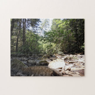 Sun and Shadow in a Creek Bed Jigsaw Puzzle