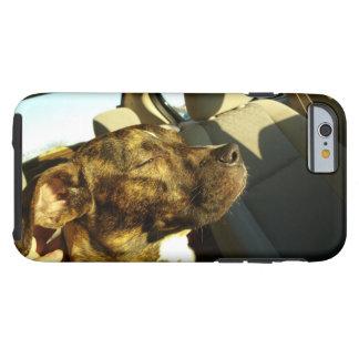 Sun Bathing Dog iPhone6 Tough Case
