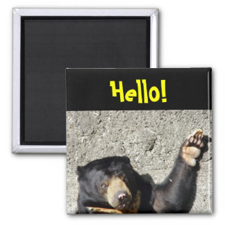 Sun Bear Hello Magnet
