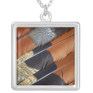 Sun Bittern feather detail Silver Plated Necklace