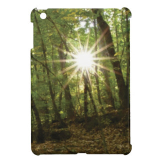 Sun breaks through woods cover for the iPad mini