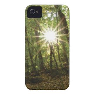 Sun breaks through woods iPhone 4 cover