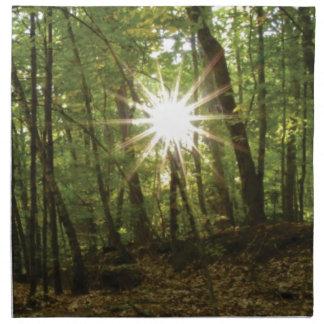 Sun breaks through woods napkin