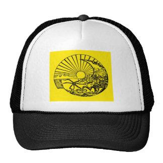 sun conch hat