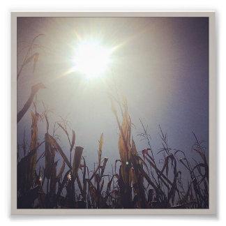 Sun-Corn God 2 Photo Print
