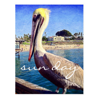 """Sun day"" inspiration beach pier pelican photo Postcard"