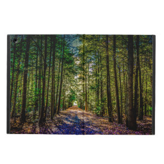 Sun Down Woods iPad Air Covers
