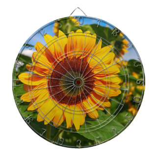 sun-flower dartboard