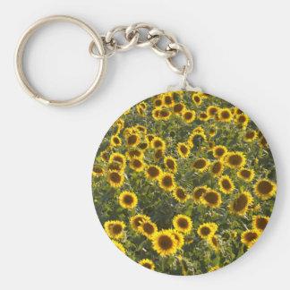 _sun flower field basic round button keychain