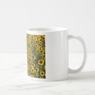 _sun flower field coffee mug