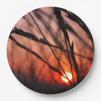 Sun in the grass Custom Paper Plates 9 in 9 Inch Paper Plate