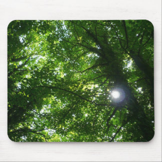 Sun in the Trees Mouse Pad