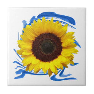 Sun-lights Grace Ceramic Tiles