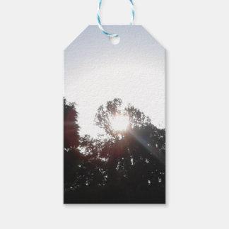 Sun Rays Gift Tags