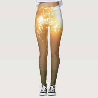 Sun Rays Leggings