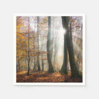 Sun Rays Mystic Scenic Fall Forest Nature Photo -- Disposable Napkins