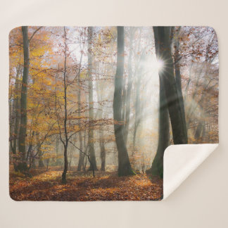 Sun Rays Mystic Scenic Fall Forest Nature Photo .. Sherpa Blanket
