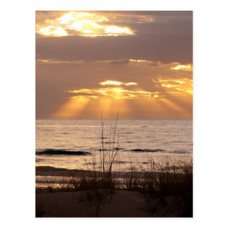 Sun Rays Ocean Sunset Postcard