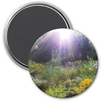 Sun Rays on the Fall Gardens Magnet