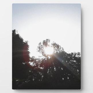 Sun Rays Plaque