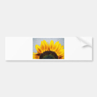 Sun rising bumper sticker