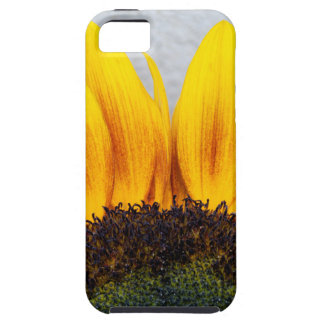 Sun rising iPhone 5 cover