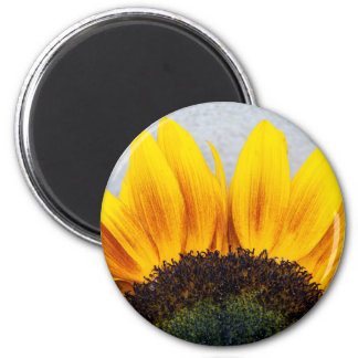 Sun rising magnet