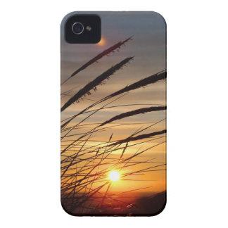 Sun Set iPhone 4 Case-Mate Case