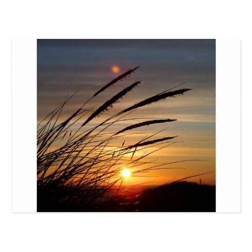 Sun Set Post Cards