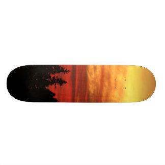 Sun Set Skate Boards