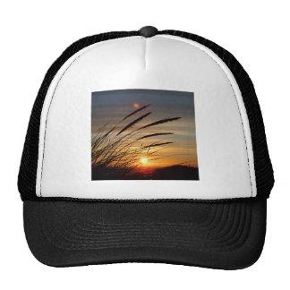 Sun Set Trucker Hat