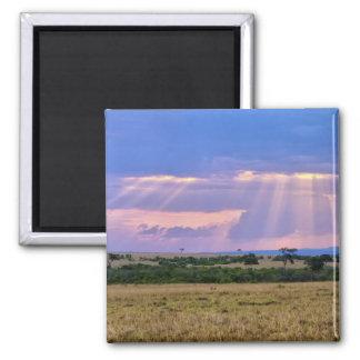 Sun setting on the Masai Mara. Square Magnet