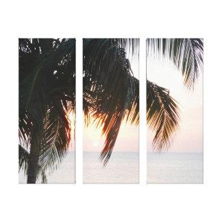 Sun Setting Under Palm Tree Doctor's Cave Jamaica Canvas Print