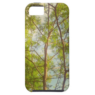 Sun Showered iPhone 5 Cover
