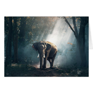 Sun Stroked Elephant in Forest Blank Card