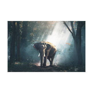 Sun Stroked Elephant in Forest Wall Art