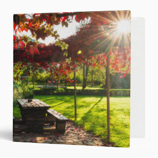 Sun through autumn leaves, Croatia 3 Ring Binder