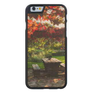 Sun through autumn leaves, Croatia Carved Maple iPhone 6 Case